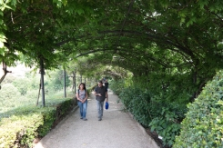 Pergola at Bardini Gardens