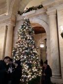 Christmas Tree, NYC