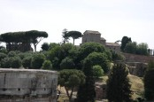 Peaking at Palatine Hill from Colosseum