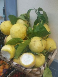 Lemons as big as one's head!