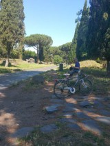 Rental bikes on the Appian Way