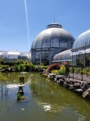 Belle Isle Conservatory in Detroit